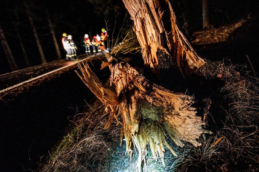Strom mezi Studánkou a Krásnou Lípou nápor větru nevydržel.