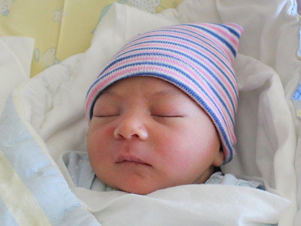 Alex Stankovič se narodil Renatě Stankovičové a Alexandru Dankovi z Varnsdorfu 5. dubna ve 4.45. Měřil 50 cm a vážil 3,34 kg.