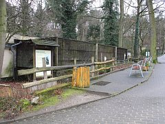 Děčínská zoo se dočká nového pavilonu pro opice.