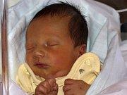 Filip Rejzek se narodil Miloslavě Rejzkové z Horního Podluží 1. prosince ve 13.03 v rumburské porodnici. Měřila 49 cm a vážila 3 kg.
