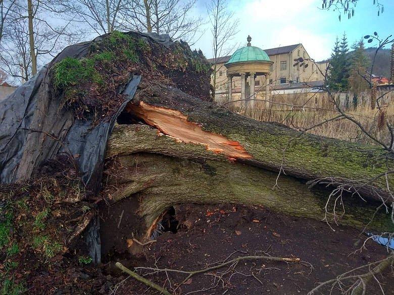 Vichřice polámala stromy i v jílovském zámeckém parku