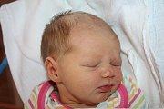 Janě Chvojkové z Děčína se 16. června ve 13.43 narodila v děčínské nemocnici dcera Sofie Chvojková. Měřila 48 cm a vážila 2,86 kg.