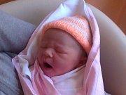 Lence Mitošinkové z Dolní Poustevny se 20. května ve 14:50 v rumburské porodnici narodila dcera Nelinka. Vážila 3,78 kg a měřila 52cm.