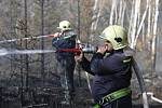 Lesní požár u Tisé hasiči likvidují už druhý den