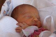 Marie Olguin Mocová se narodila Barboře Mocové z Děčína 16. března v 16.51 v děčínské porodnici. Vážila 2,7 kg.