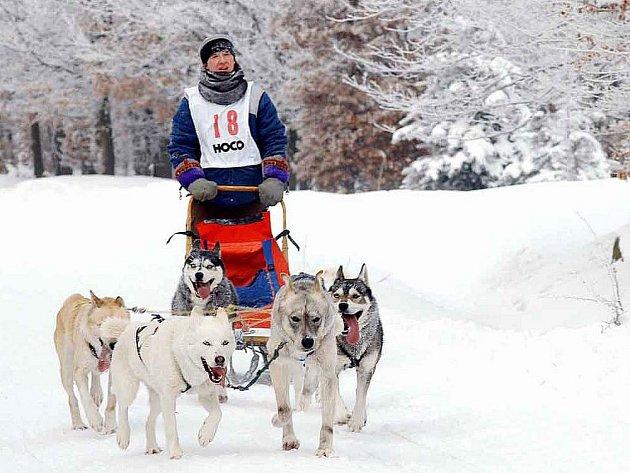 POZVÁNKA. Na děčínském Sněžníku se budou konat prestižní psí závody