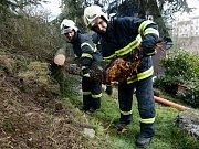 Následky silného větru hasiči odstraňovali také v sobotu