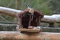 Krmítka a budky slouží ptákům především v zimním období.