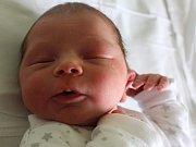 Adámek Adamec se narodil Karolíně Bendové z Jílového 12. dubna ve 20.31 v děčínské porodnici. Měřil 50 cm a vážil 2,9 kg.