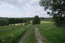 Do českého výběžku v německém území by se mělo vrátit historické stromořadí téměř šesti desítek dubů.