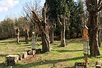 Hřbitov v Lísce u České Kamenice.