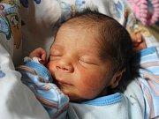 Samuel Kureja se narodil Petře Kurejové z Děčína 8. května v 17.44 v děčínské porodnici. Vážil 2,33 kg.
