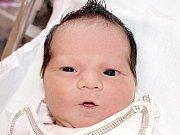 Tereze Čičákové ze Šluknova se 11. července v 9:10 v rumburské porodnici narodila dcera Terezka Čičáková. Měřila 47 cm a vážila 2,8 kg.