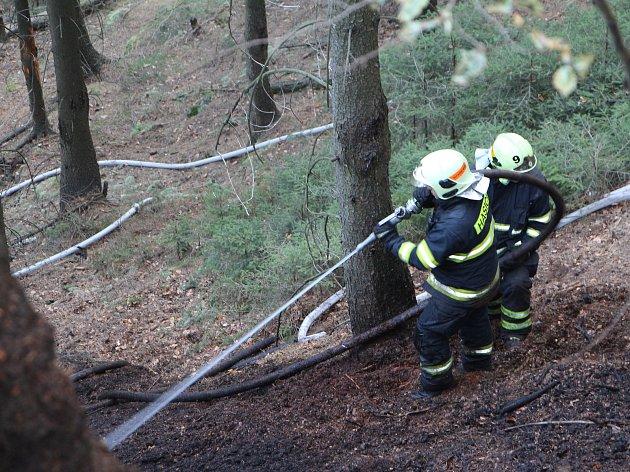 Lesní požár ve Hřensku.
