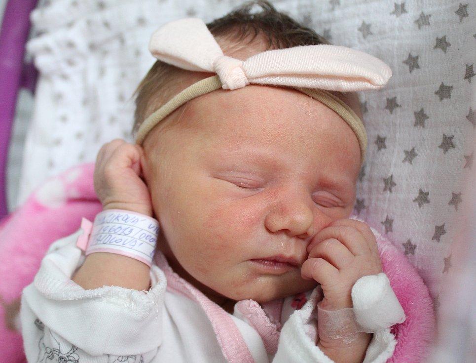 Rodičům Sáře Saidlové a Dominiku Hájkovi z Varnsdorfu se v neděli 13. října ve 2:56 hodin narodila dcera Vivien Hájková. Měřila 44 cm a vážila 2,40 kg.