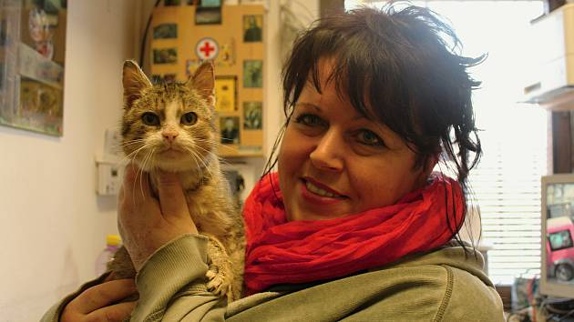 Eveline Jahelková pracuje jako vedoucí děčínského útulku už 17 let.