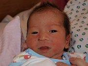 Bui Thi Minh Tuyen z Rumburka se 10. října v 8:10 v rumburské porodnici narodil syn Tran Anh Tu. Měřil 46 cm a vážil 2,71 kg.