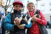 Města a obce si na Den Země připravily akce, které hlavně dětem přiblíží zajímavosti o přírodě. Nebudou chybět ani živá zvířata nebo lesní koutky.