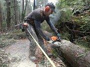 Lesní dělníci likvidují škody po nedělní vichřici v národním parku.