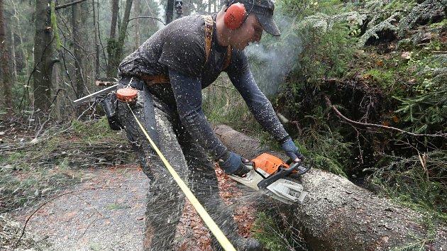 Likvidace škod po vichřici v národním parku