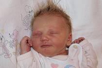 Michaele Janoušové z Rumburka se 24.ledna v 7.20 v rumburské porodnici  narodila dcera Kristýnka Janoušová. Měřila 49 cm a vážila 3,27 kg.