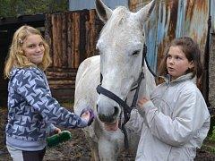 Jezdecký klub v Březinách zatím láká více dívky. Ty, které na farmu docházejí už delší dobu, zvládají bez problému hřebelcování a další péči o milovaná zvířata.