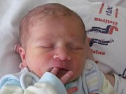 Jiřině Wittgruberové z Jiříkova se 26. května ve 4:26 narodil syn Matěj Bruder. Měřil 48 cm a vážil 2,95 kg.