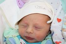Gabriele Rychtecké z Děčína se 18. prosince v 08.30 narodil v děčínské nemocnici syn Ladislav Rychtecký. Měřil 47 cm a vážil 2,59 kg.