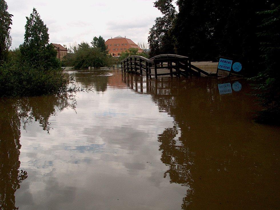 Povodeň v zoo.