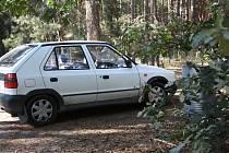 Auto parkující v lese. Ilustrační foto.