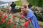 Na zámku v Děčíně si mohou lidé adoptovat růži nebo révu.