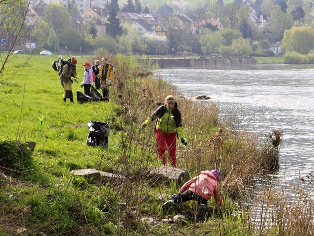 Dobrovolníci uklízejí labský břeh.