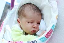 Rodičům Tereze a Janu Novodárským z Varnsdorfu se ve středu 21. srpna v 18:15 hodin narodila dcera Nela Novodárská. Měřila 50 cm a vážila 3,36 kg.