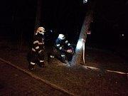 V Obloukové ulici v Děčíně zasahovali hasiči u stromu nakloněného nad hřiště.