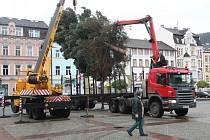 Vánoční strom již stojí na náměstí