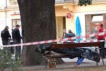 V parku na Husově náměstí v Děčíně nalezl náhodný chodec mrtvolu muže.