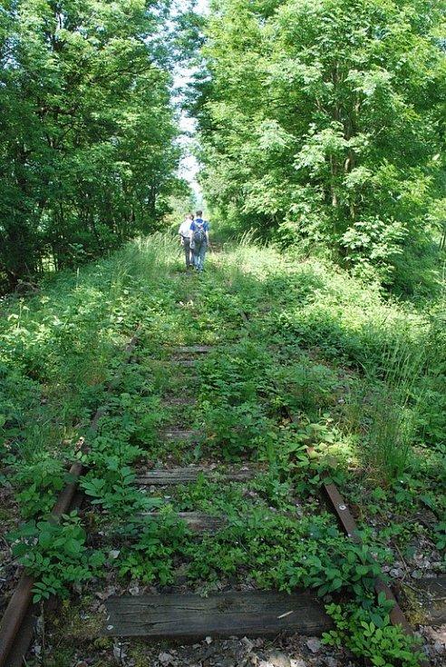Železniční trať se na mnoha místech ztrácí před očima pod bujnou vegetací