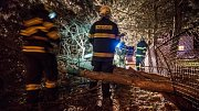 Na Šluknovsku vyjížděli hasiči k desítkám popadaných stromů.