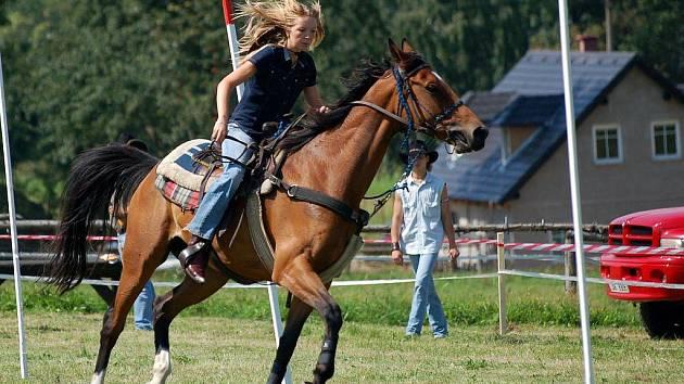 Tak jako každoročně, i letos se milovníci koní sešli pod sjezdovkou v Horním Podluží na dalším ročníku Rodea.