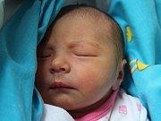 Anička Forróvá se narodila Šárce Fibigerové z Varnsdorfu 15. listopadu v 0.10 v děčínské porodnici. Vážila 2,7 kg.