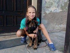 MAX S DCEROU Šárky Doskočilové poté, co si ho přivezli domů. Tehdy byl ještě malé štěně, dnes je mu osm měsíců, což již téměř odpovídá velikosti dospělého psa.
