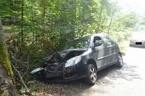 Nehoda u Srbské Kamenice.