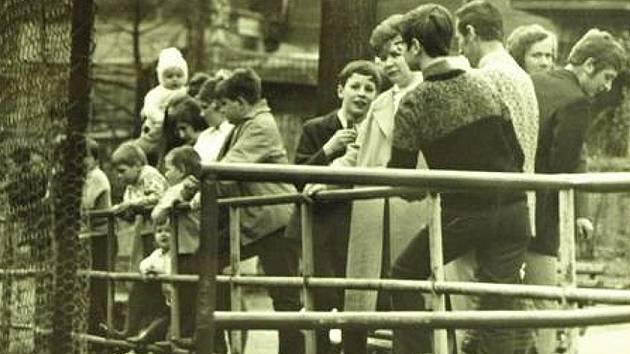 80. léta. Zoo byla oblíbeným výletním místem Děčíňáků.