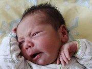 David Horák se narodil Renátě Horákové ze Šluknova 29. července v 17.56. Měřil 48 cm a vážil 3,33 kg.