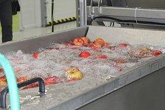 Jak se vyrábí pravý jablečný mošt se přišly podívat desítky lidí.