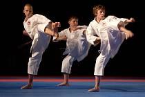 Ilustrační foto karate