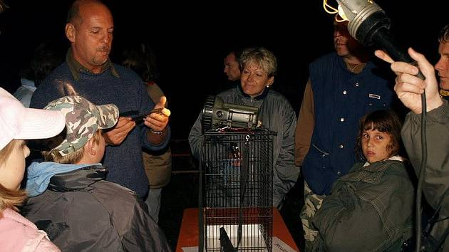 Sobotní večer patřil netopýrům