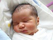 Dominik Sivák se narodil Heleně Sivákové a Josefu Rigovi z Varnsdorfu 10. dubna v 8.04. Měřil 50 cm a vážil 3,05 kg.