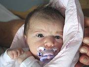Sofinka Fantová se narodila Michaele Dittrichové z Arnoltic 5. srpna v 15.19 v děčínské porodnici. Měřila 51 cm a vážila 4,08 kg.