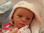 Ella Zemanová se narodila Kateřině Šedivé z České Kamenice 8. ledna v 19.33 v děčínské porodnici. Měřila 44 cm a vážila 1,8 kg.